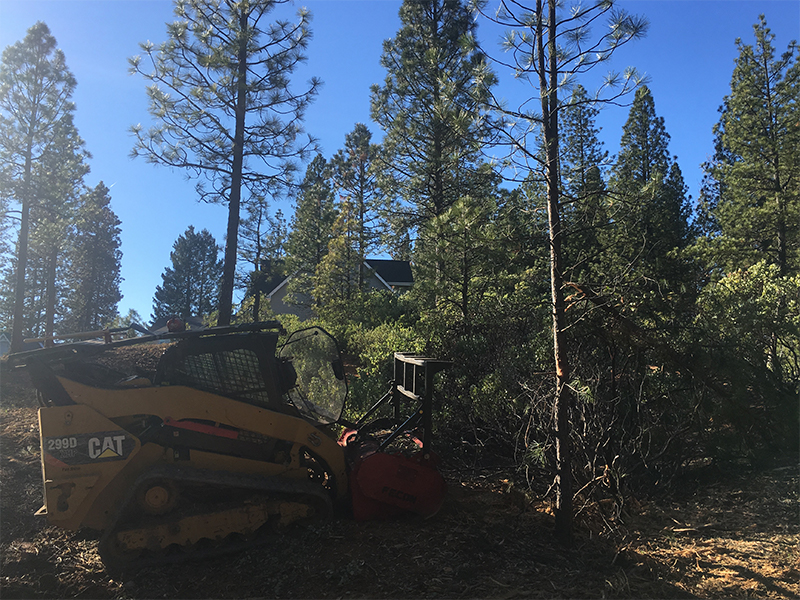 Land Clearing & Wildfire Prevention - 20160127 - before