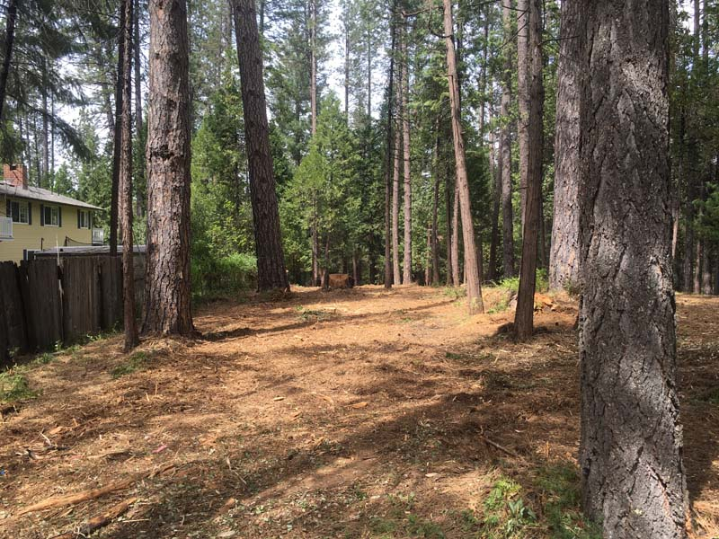 Land Clearing & Wildfire Prevention - 20160418b - after