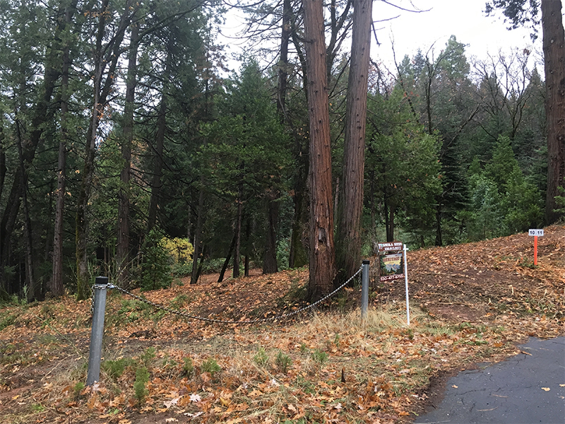 Land Clearing & Wildfire Prevention - Merrill Court 1 - after