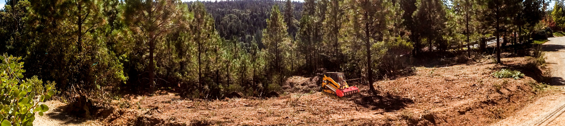 Land Clearing by Byers with Wildfire Prevention and Defensible space.