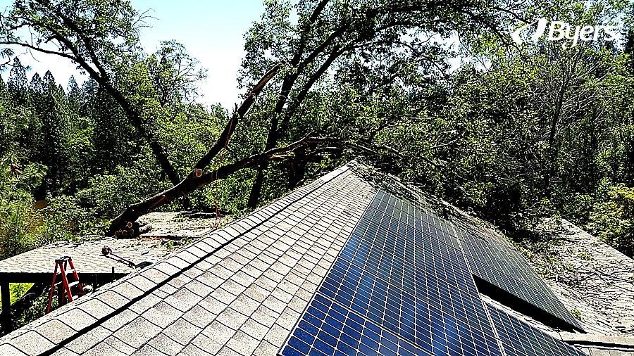 Byers SunPower Tree Fall - Solar Panels still working